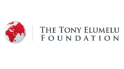 tony-elumelu-foundaion