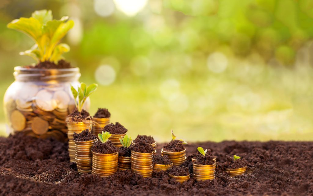 agric-investment-platforms-in-nigeria