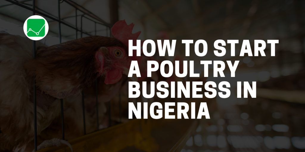 how to start a poultry business in nigeria